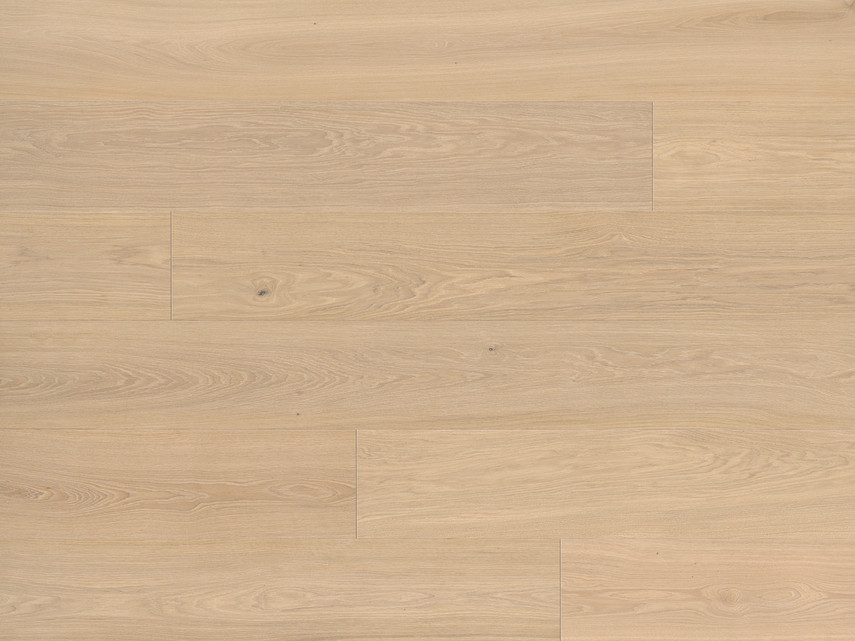 Silverline Edition - Oak Farina 14